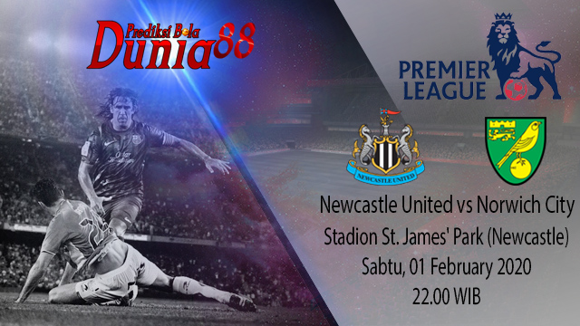 Prediksi Newcastle United vs Norwich City 01 February 2020